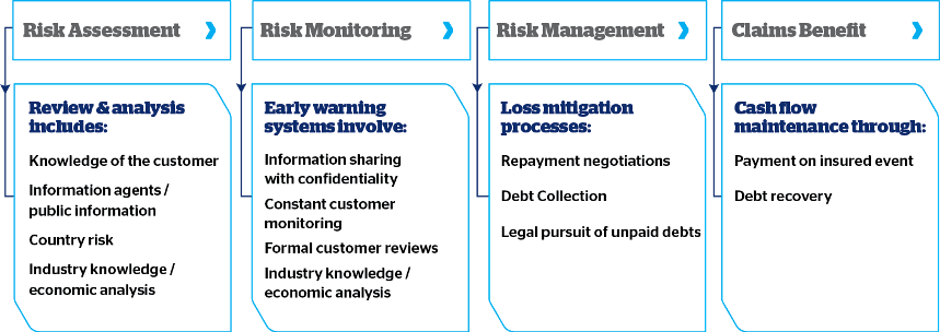 Risk management model